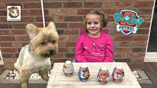 PAW PATROL ÜBERRASCHUNGSEI 🐶 Pudding mit kleinen Hunde Figuren zum Sammeln 🐶 Surprise Egg