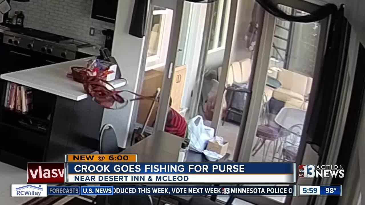 Crook Goes Fishing Steals Purse With Pole Through Dog Door Of Las