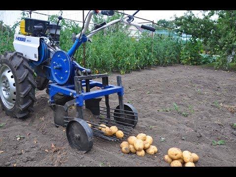 Испытание картофелекопалки с мотоблоком. Убираем ранний картофель Ариэль.