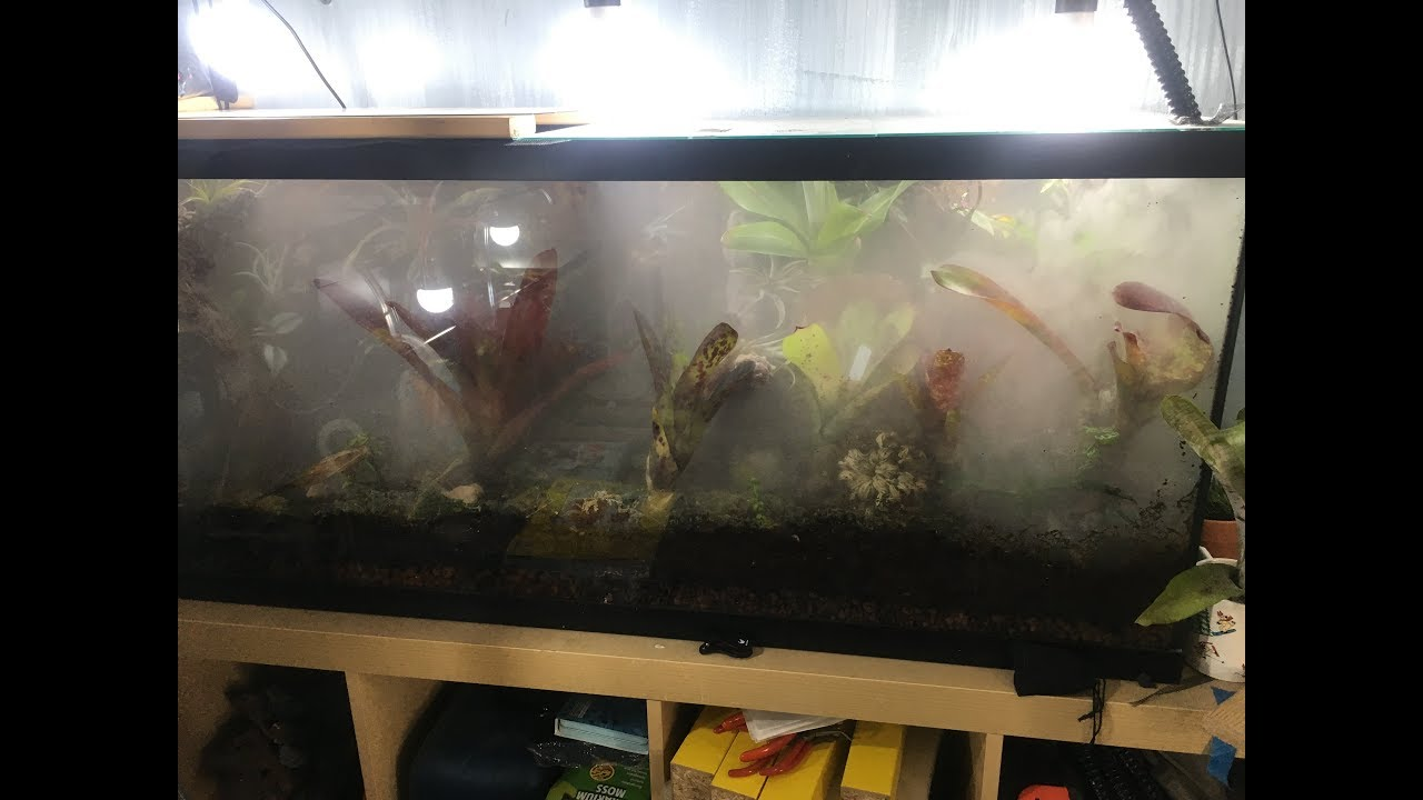 15 Diy Fogger For Frog Tank Or Vivarium Youtube