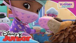 Doctora Juguetes: Momentos Mágicos - Stanley   Disney Junior Oficial