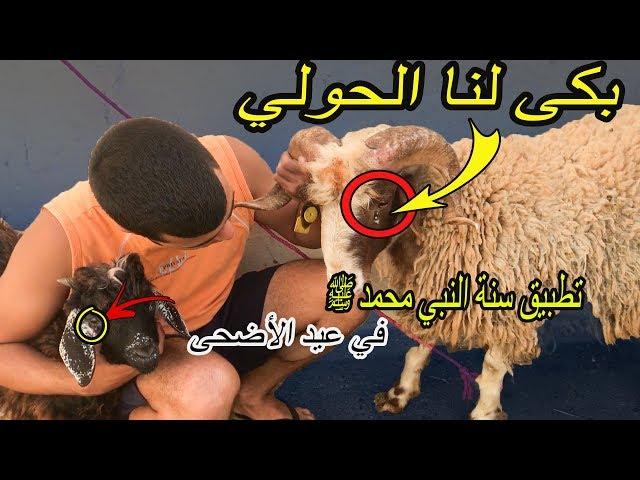 اول عربي يطبق سنة النبي محمد ﷺ في عيد الأضحى 2019 ❤💐