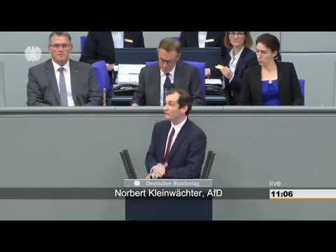 Norbert Kleinwächter(AfD) bringt die...