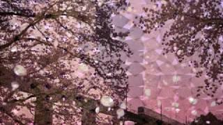 花 吹 雪 ( ちあき なおみ ) thumbnail