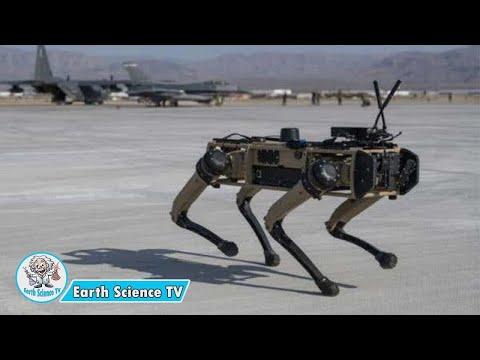 科技超越 美佛州空军基地首获机器狗(图/视频)