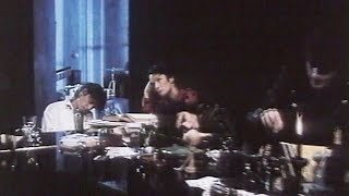TELEPHONE - Le jour s