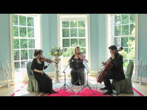 The Shipping Forecast (BBC Radio) Wedding String Quartet