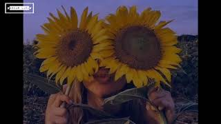 Swae Lee ft Post Malone - Sunflower (Sub. Español/Letra)