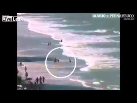 BREAKING Woman tourist killed in Brazil shark attack Jul 24 2013