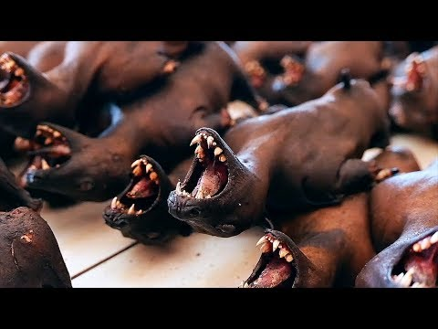 Индонезийская еда - Летучие мыши мясо приготовить двумя способами Манадо Индонезия