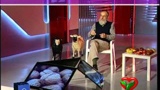 Repeat youtube video Dottor Piero Mozzi prostata -frutta secca-