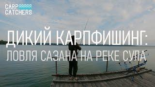 Дикий карпфишинг ловля сазана на реке Сула Видео 4К