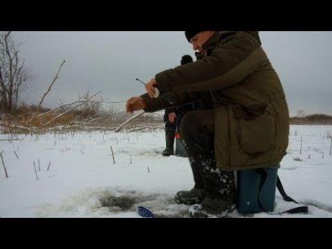 волгоградская зимняя рыбалка