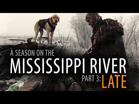 6/60: PART 3: LATE | A Duck Hunting Season on the Upper Mississippi River