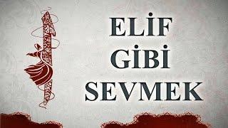 Elif Gibi Sevmek / Şiir: Hikmet Anıl Öztekin