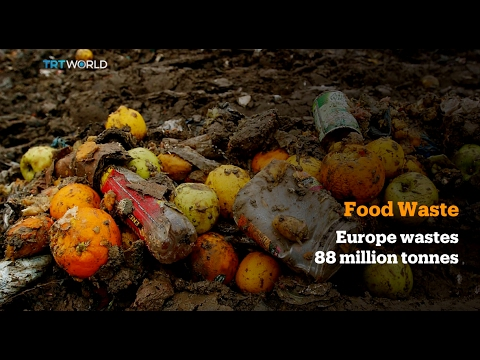 Money Talks: EU aims to halve food waste by 2030