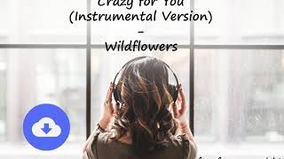 Crazy for You (Instrumental Version) - Wildflowers [no copyright music] [free download]