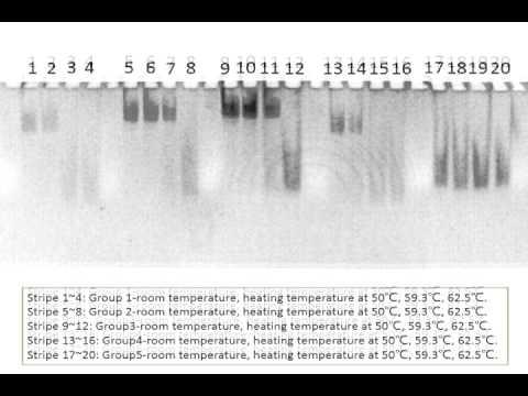 Team Tianjin - DNA Photosensor (BIOMOD 2014)