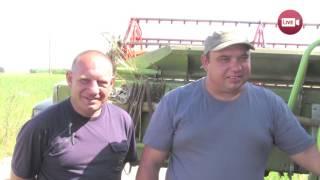 Слонимский комбайнер, намолотивший первым тысячу тонн зерна заработал...