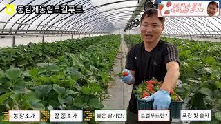 [사업단TV - 농가 인터뷰] 김제 '김지현&#…