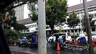 Pohon Tumbang Di Depan Kantor Pertamina Jakarta