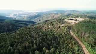 Video Degradacion del Bosque Nativo en Chile