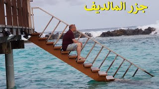معلومات لازم تعرفها قبل السفر الى جزر المالديف Important tips for travellers to Maldives