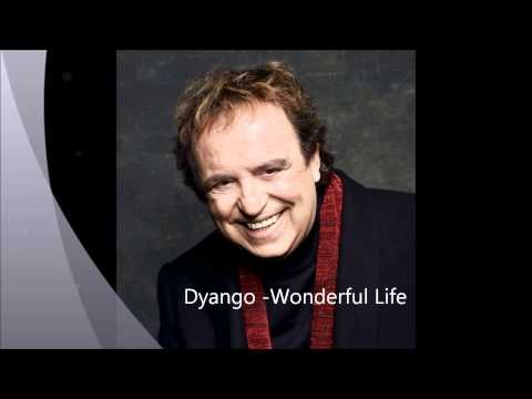 Dyango - Wonderful Life