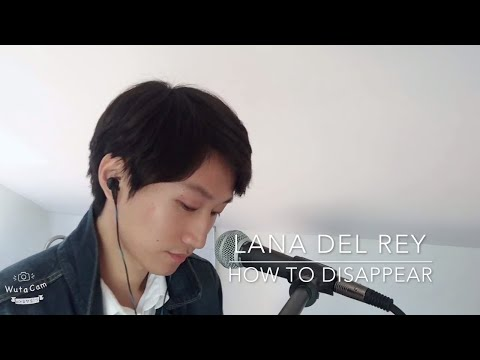 Lana Del Rey - How to Disappear Cover