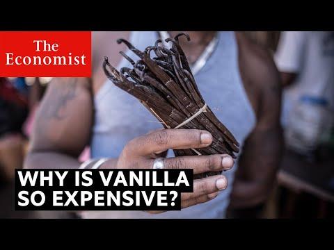 Why is vanilla so expensive? | The Economist
