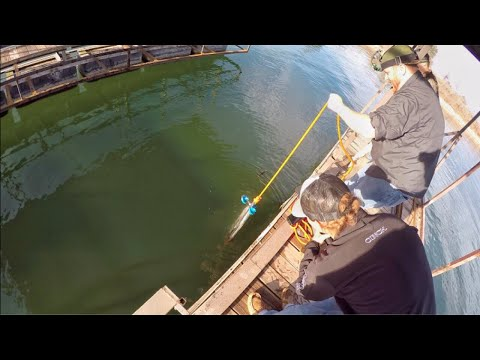 We Hit The Jackpot Magnet Fishing!! Possible Sunken Boat Found!?!
