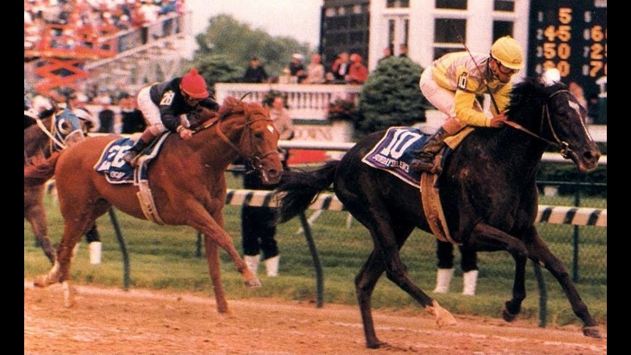 1000  images about Sunday Silence on Pinterest | Kentucky derby ...