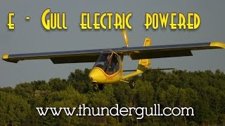 e Gull electric ultralight aircraft, 40 HP for less $ than a comparably powered gas engine.