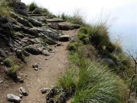 The Path To Enlightenment - Spiritual Nourishment