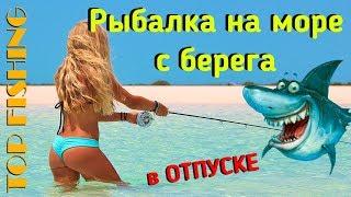 Рыбалка на море Ловля Дорады пеленгаса кефали с берега на море снасти наживка