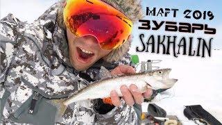 Рыбалка на Сахалине - зубарь! Март 2019