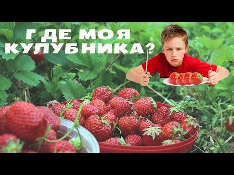 Джубга.Среда-все на рынок!Покупаем овощи, фрукты.