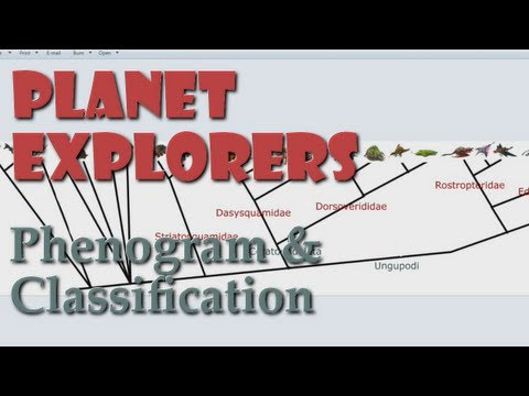 Platypus Presents - Planet Explorers: Faunal Classification