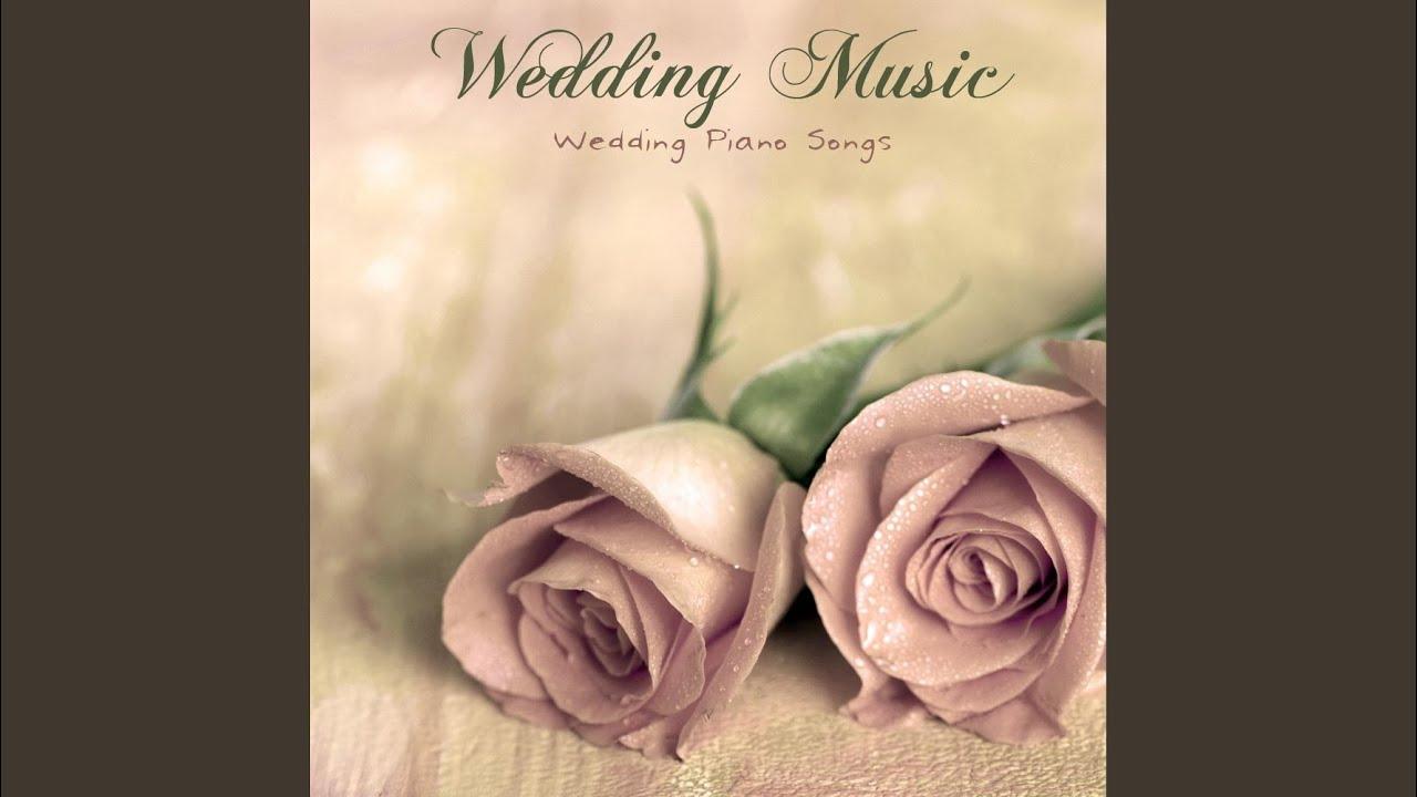 elegant wedding wedding reception songs youtube