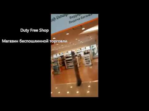Arriving Zone at Zvartnots Airport Yerevan EVN / Прибывающая