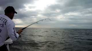 Tarpon Fishing Everglades Florida Dec 2013