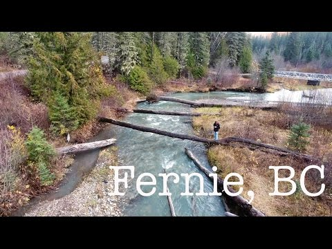 You Need To Visit This Place | Fernie, BC | (4k)