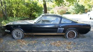 "The ""Barn Find"" 1966 Shelby GT350H Mustang sitting for decades - The Auto Archaeologist"