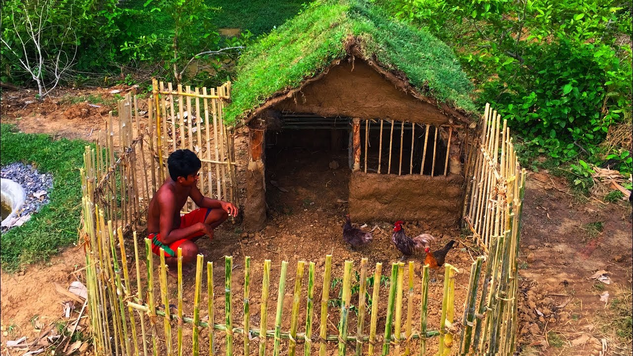 Secret Of Primitive: Building House Chicken​