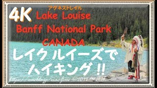 Lake Agnes Trail【4K】カナディアンロッキーでハイキング !  Let's go hiking in CANADA ! / LakeLouise (3840×2160)