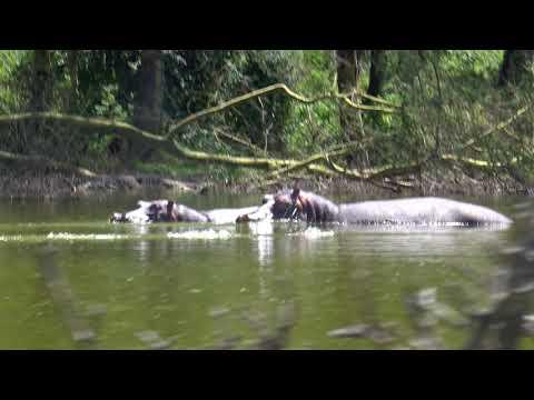 Fishermans Camp Naivasha