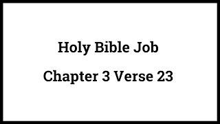 Holy Bible Job 3:23