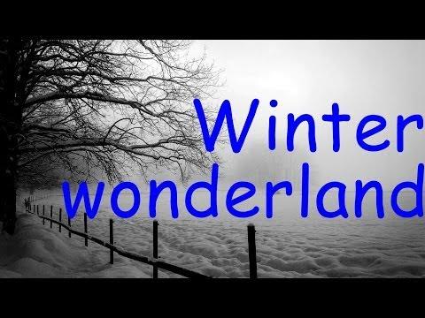 Michael Bublé & Rod Stewart - Winter Wonderland (lyrics)
