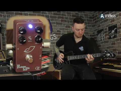 Quick Play - CKK Flaming Lips distortion pedal