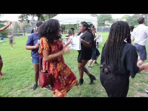 Bed Stuy Pride 2019 - Electric Slide